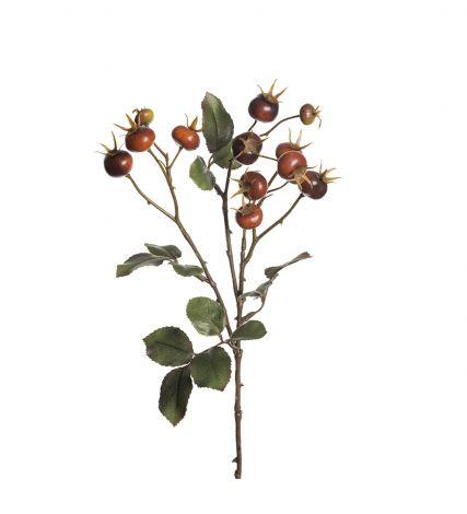 Mr Plant Nypon 65 cm