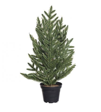 Mr Plant Gran 30 cm